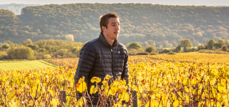 Quentin jeannot - Grand vin d'exception Domaine Jeannot